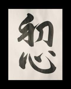 sho-shin_-_beginners_mind411